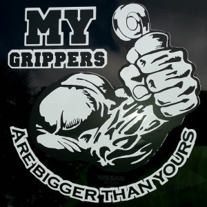 grippers on window